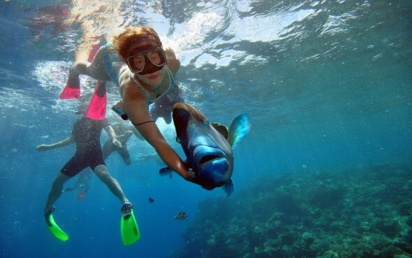 Stepin-Stipendiatin Lara mit Napoleon-Lippfisch Wally am Great Barrier Reef