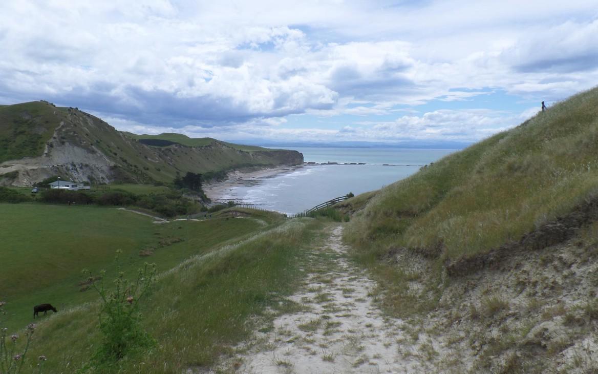 Myrna in Neuseeland #4: Auf Erkundungstour