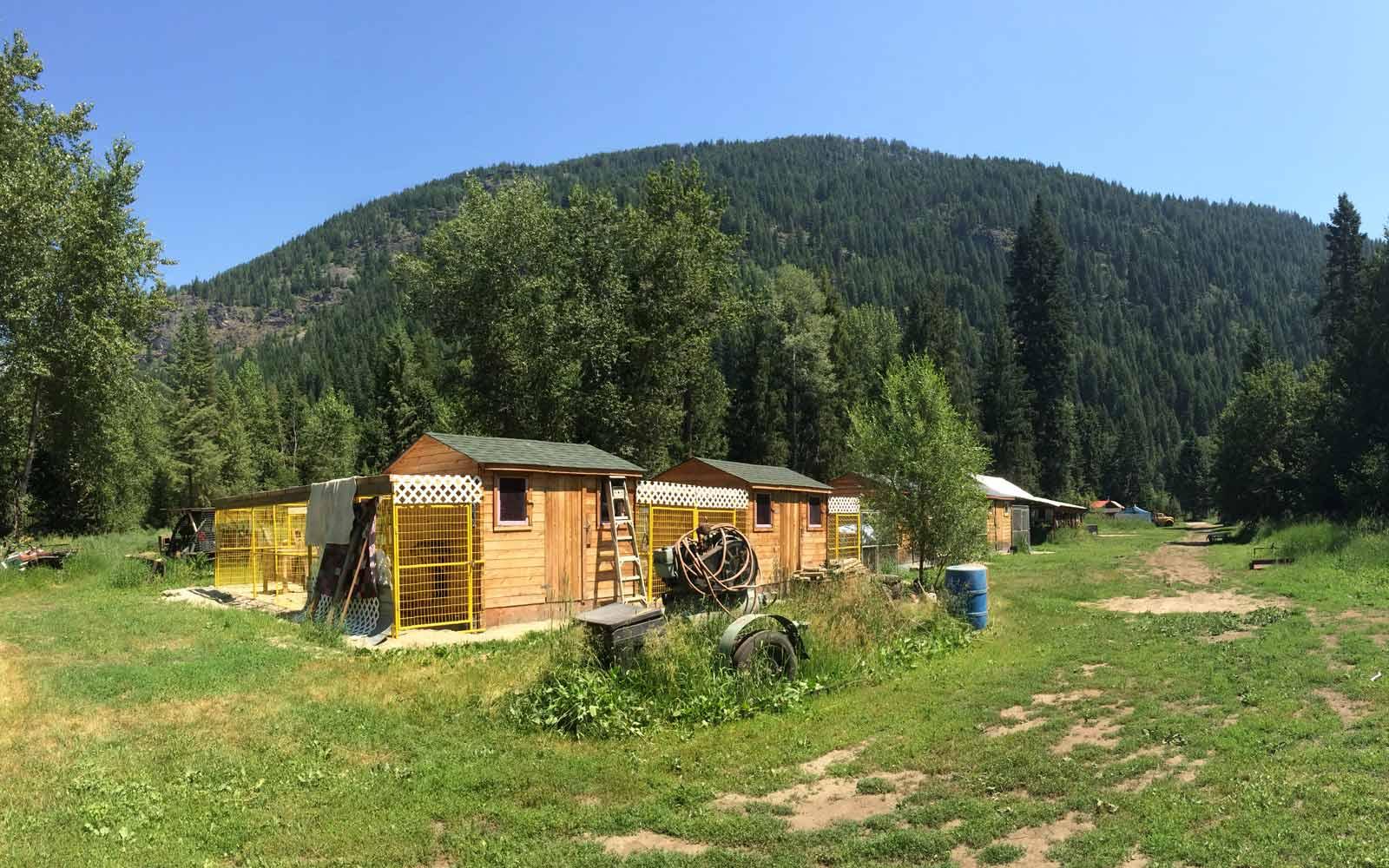Husky-Hütten in Kanada im Sommer