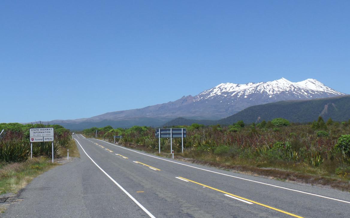 Myrna in Neuseeland #6: Weihnachten im Sommer