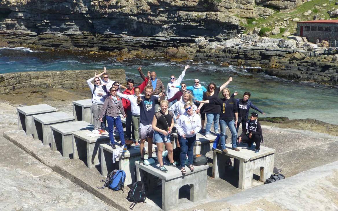 Laras Amazing Race #7: Pinguin-Projekt am Westkap und Finale
