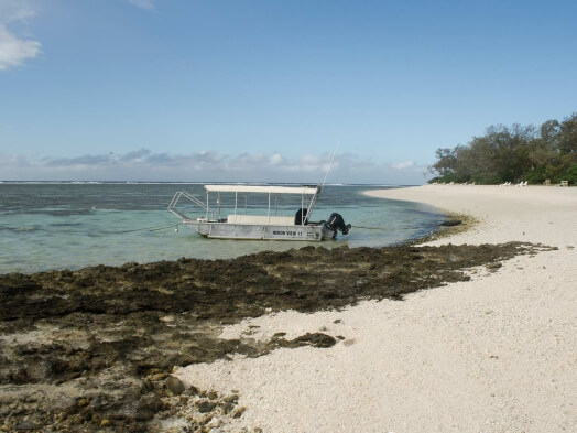 Strand auf Lady Elliot Island