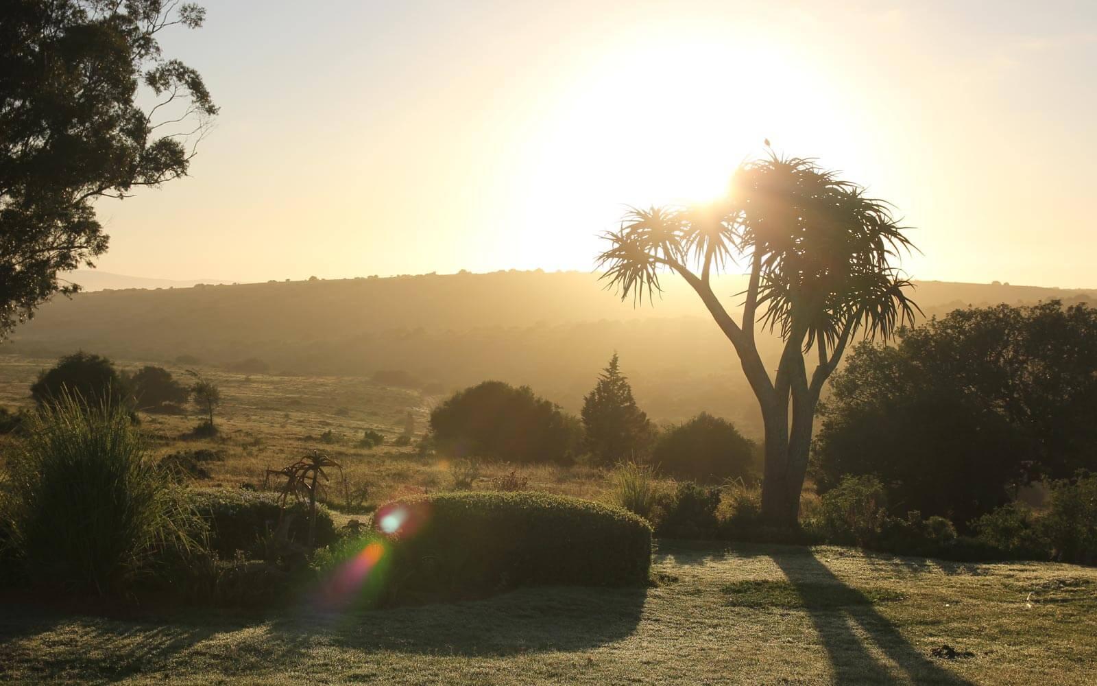 Sonnenaufgang in Südafrika