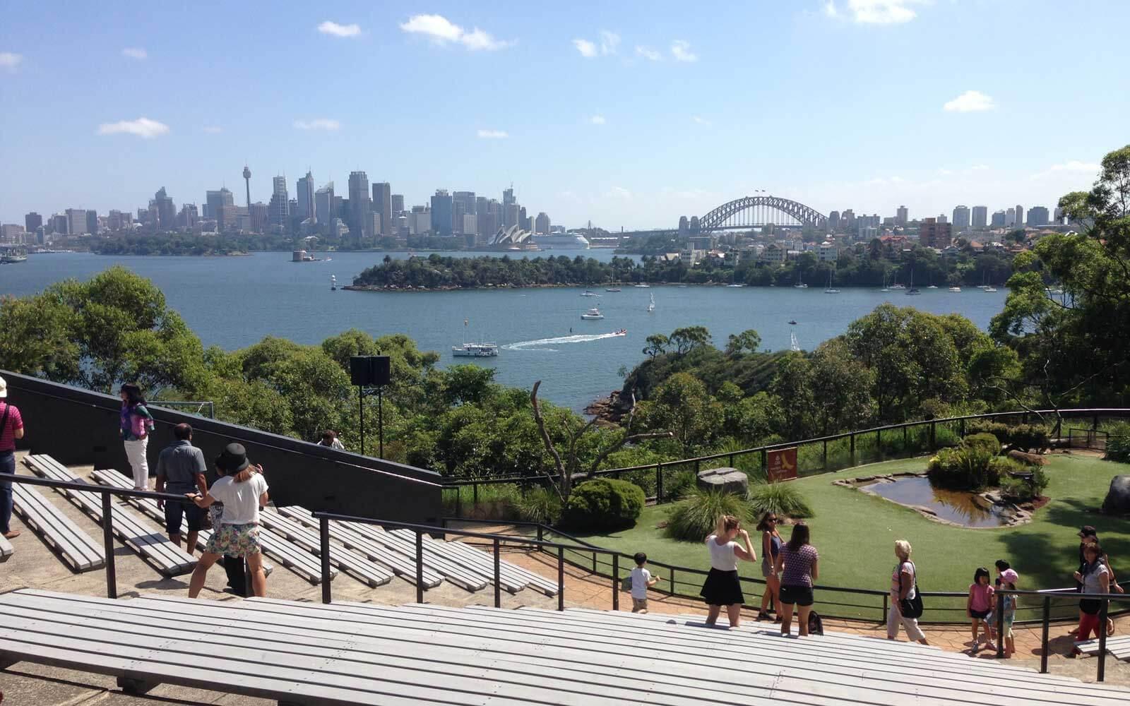 Sydneys Skyline vom Tauranga Zoo
