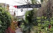 Plant Magic Flower Station