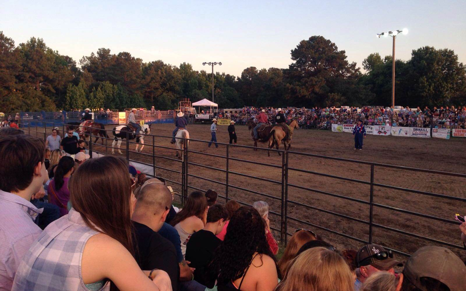 Rodeo in den USA