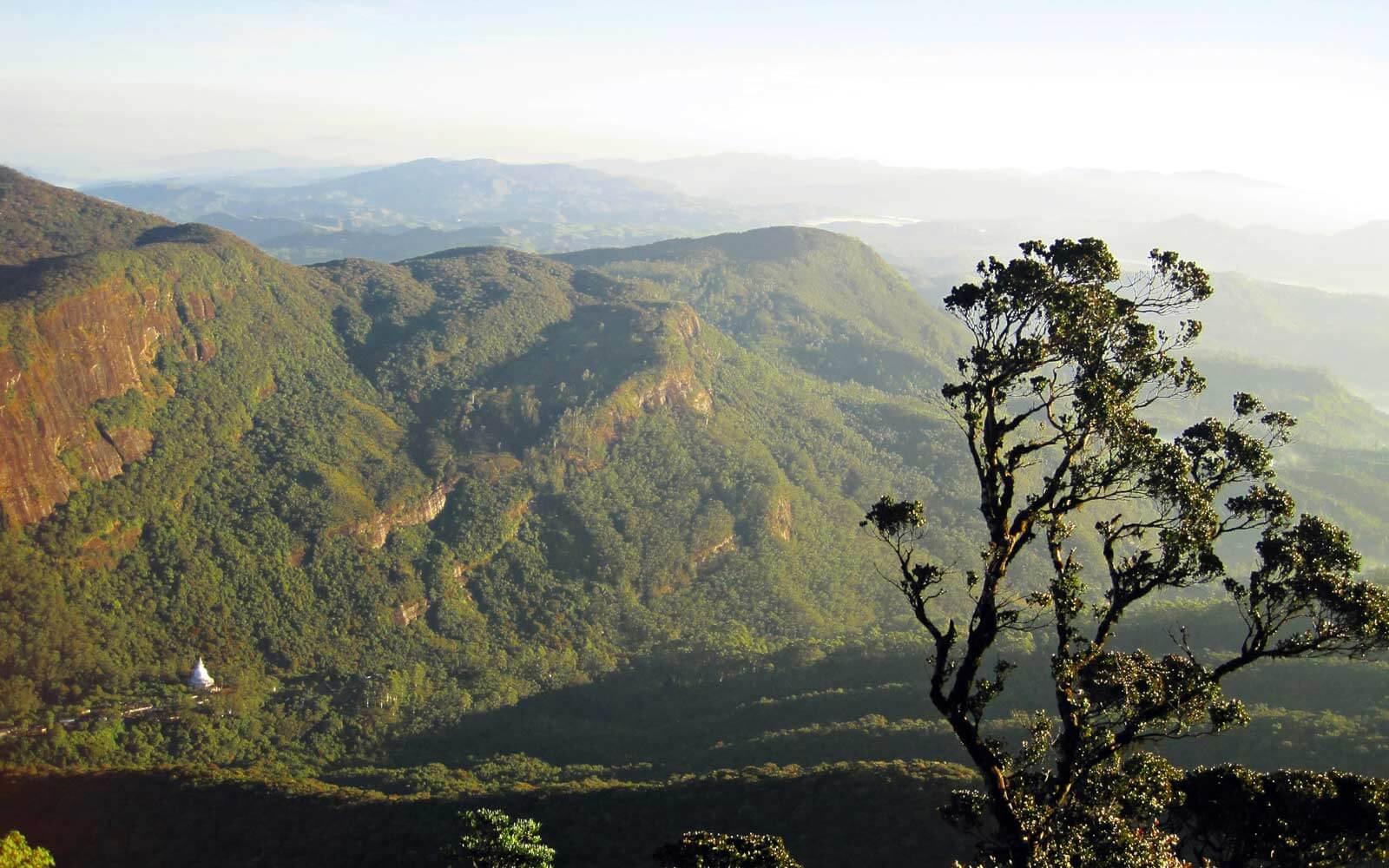 Blick vom Adam's Peak Sri lanka