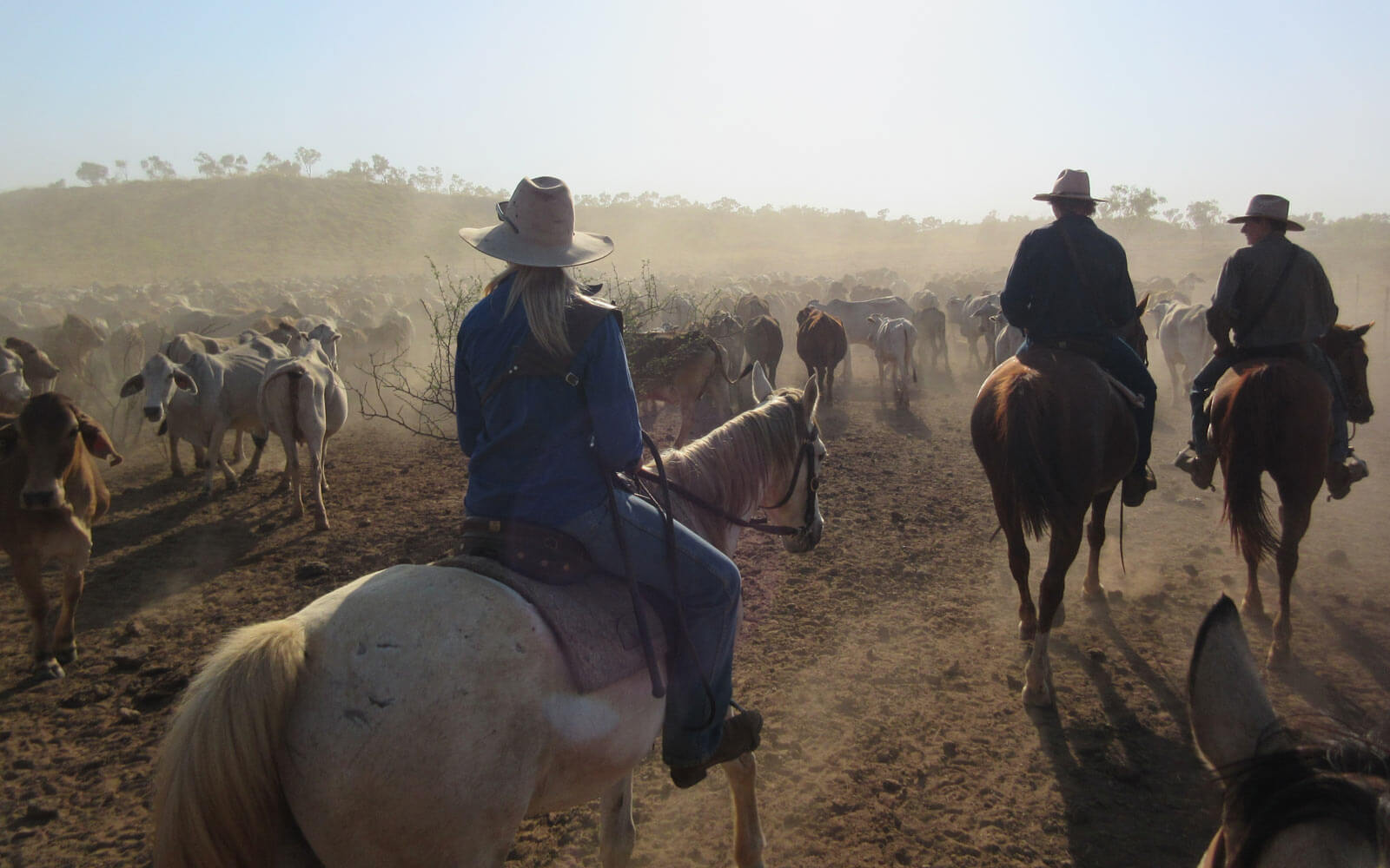 Cowgirls in Australien