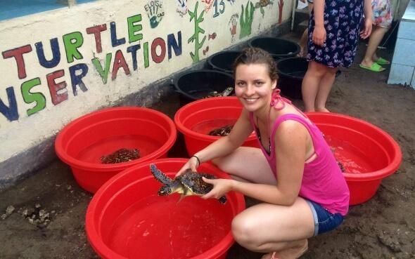 Leonie säubert die Meeresschildkröten