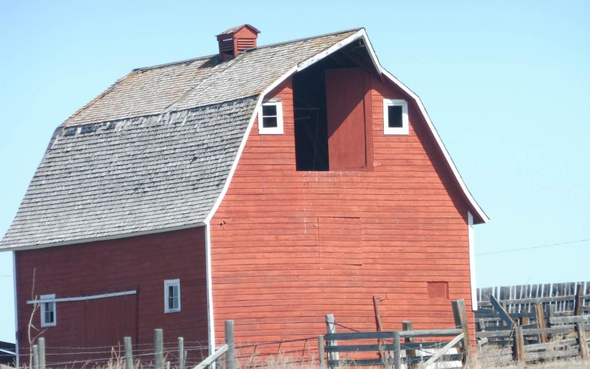 Farmarbeit Kanada: Von Österreich in die große weite Welt