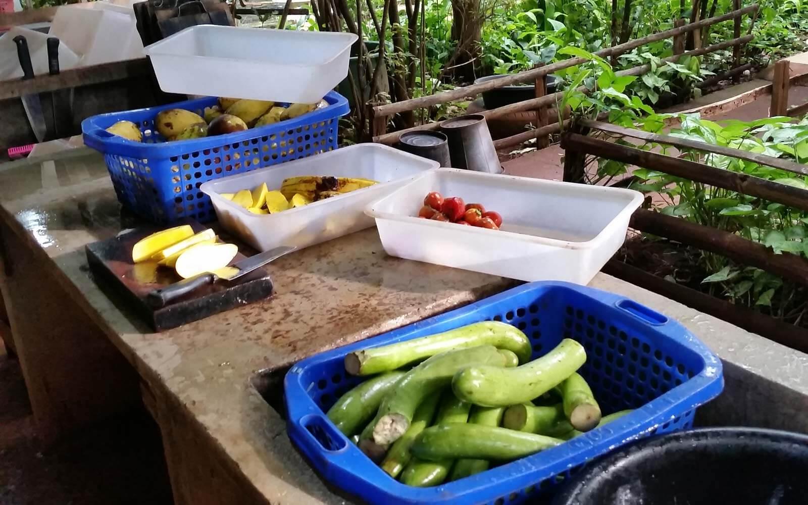 Das Futter für die Affen wird zubereitet
