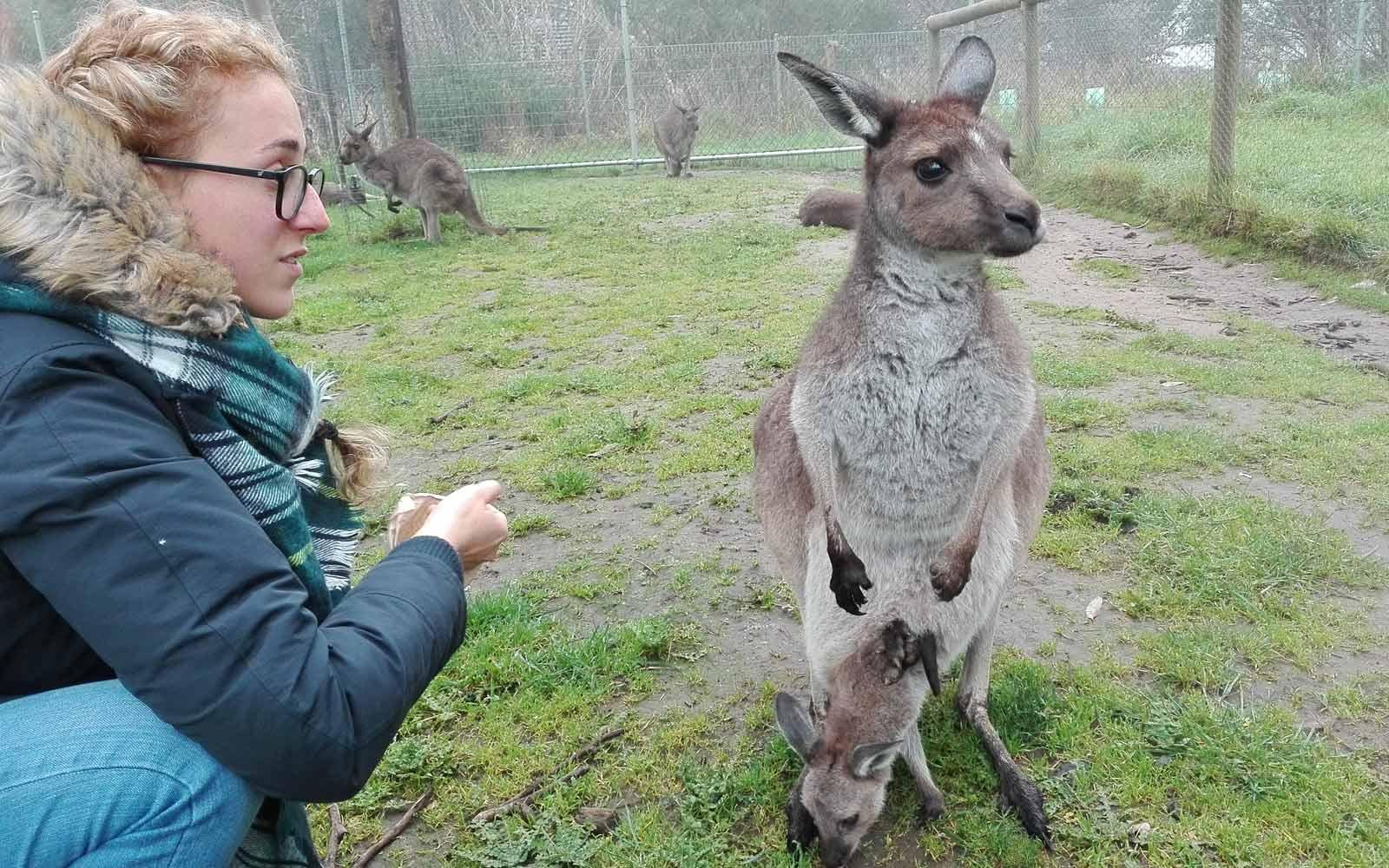 Mädchen mit Känguru