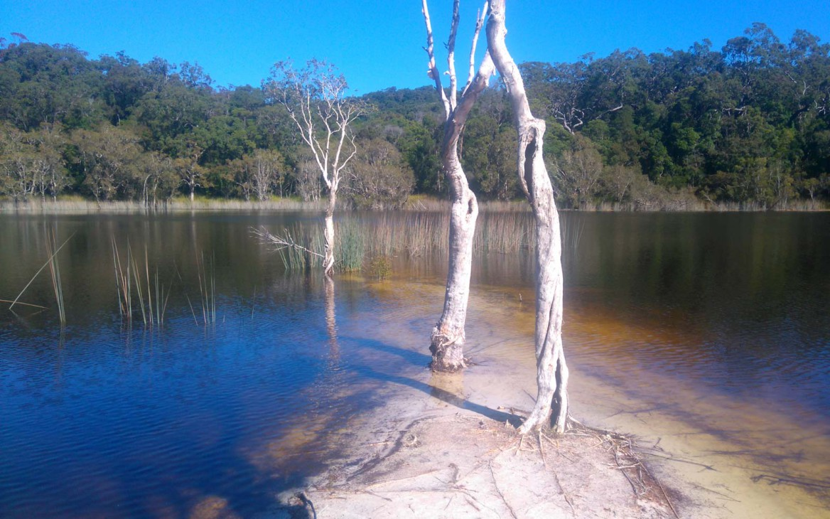 Justin in Australien #3: Cooloola Great Walk