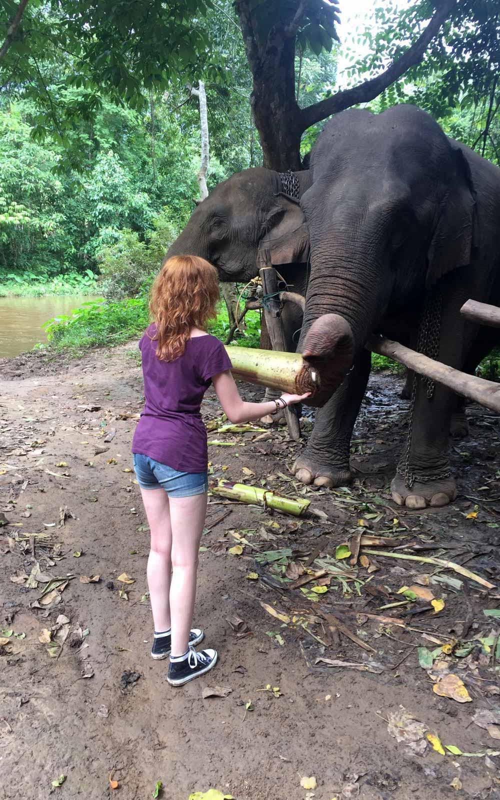 Verena beim Elefantenfüttern