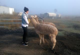 Justin in Australien #4: Vom Leben und Arbeiten in Boonah