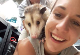 Freiwilligenarbeit in den USA: Nina im Florida Wildlife-Projekt