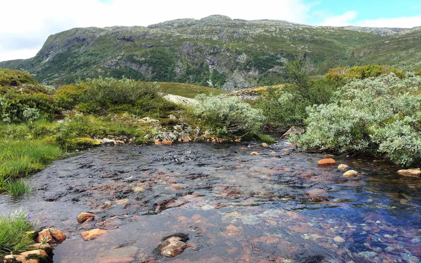 Berge und See in Norwegen