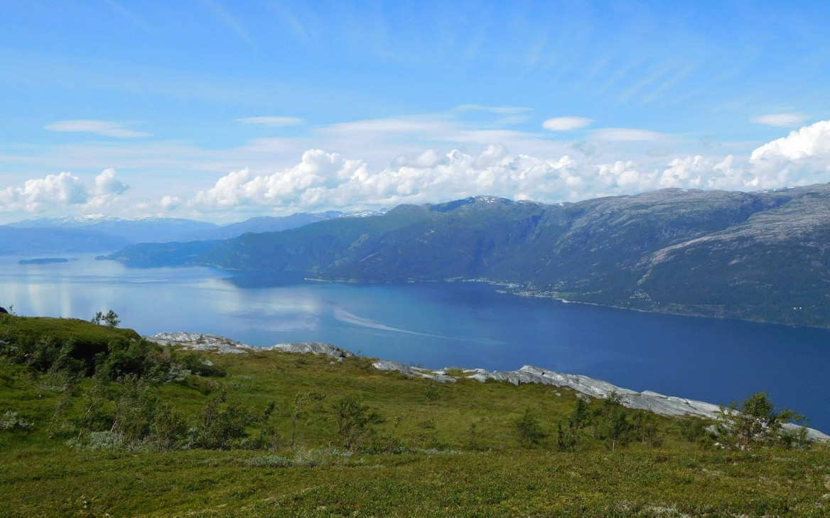 Farmarbeit in Norwegen: Zum Work and Travel nach Skandinavien
