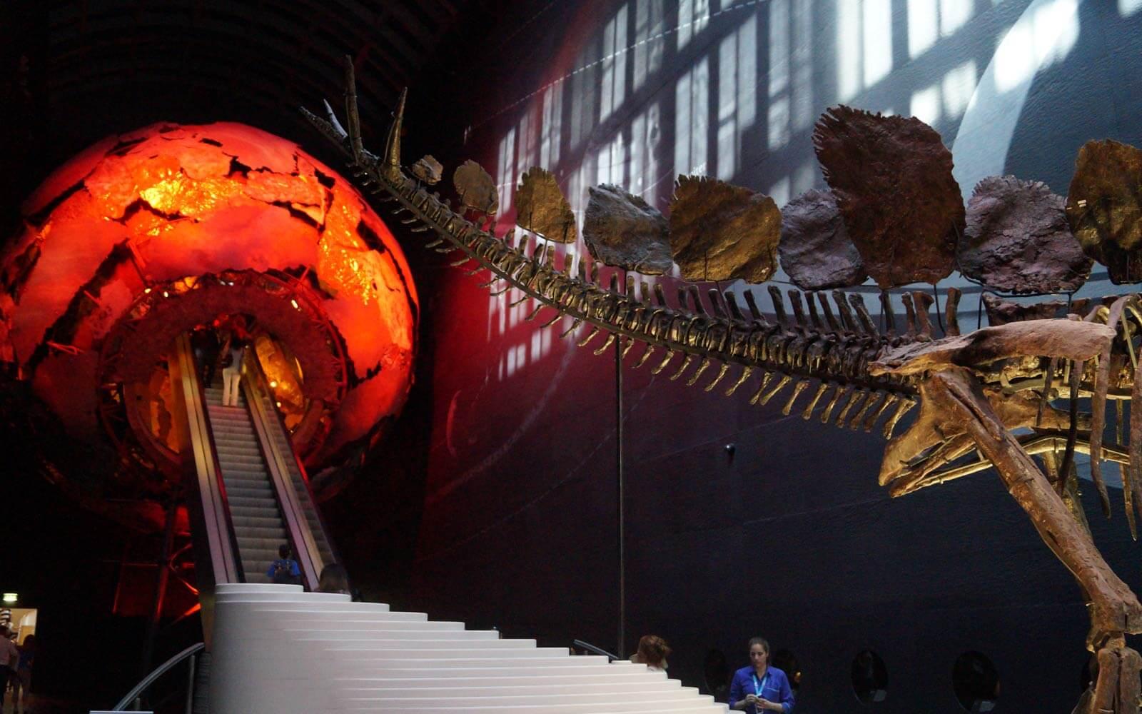 Dinosaurier-Skelett im Natural History Museum in London