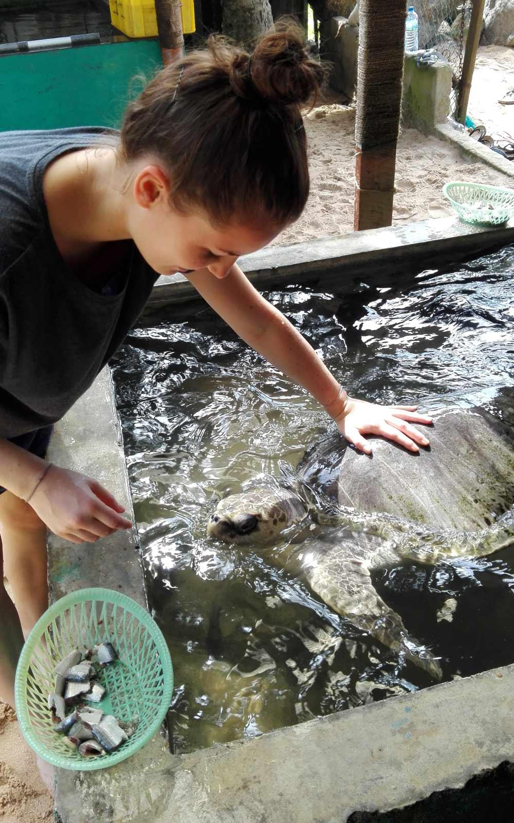 Samira im Schildkröten-Projekt auf Sri Lanka