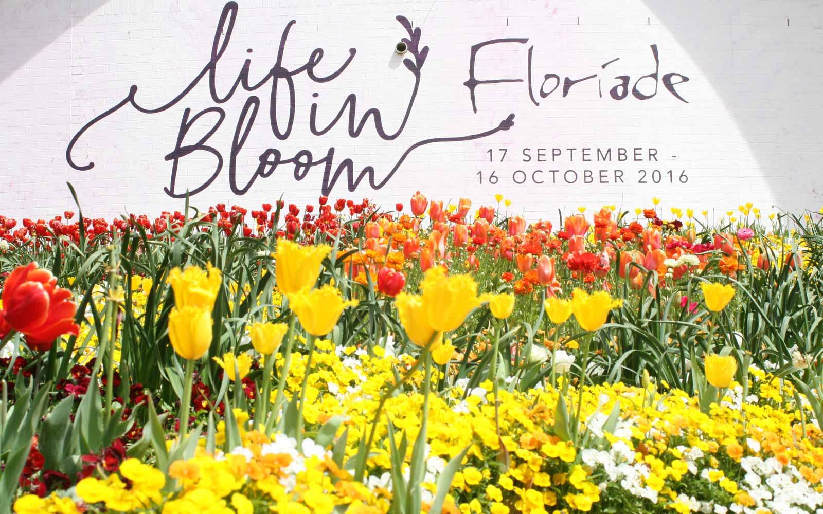 Floriade in Canberra, Australien