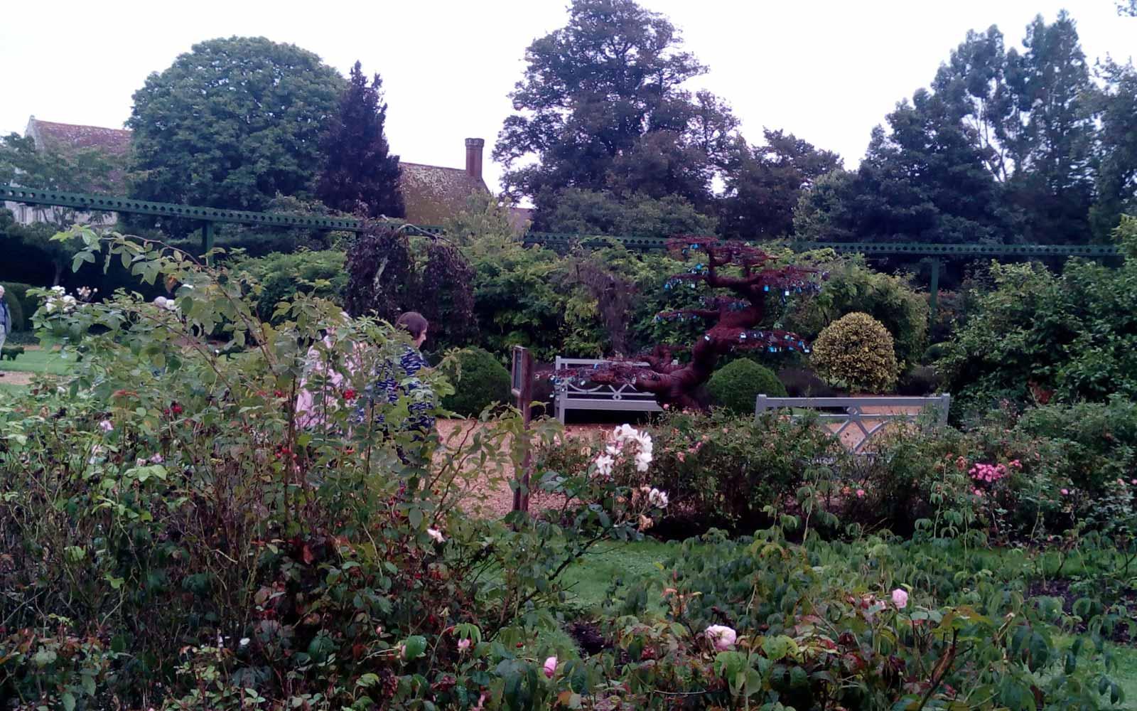 Landschaftsgarten in Salisbury