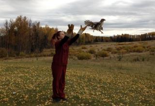 Denise in Kanada #4: Der Winter steht vor der Tür
