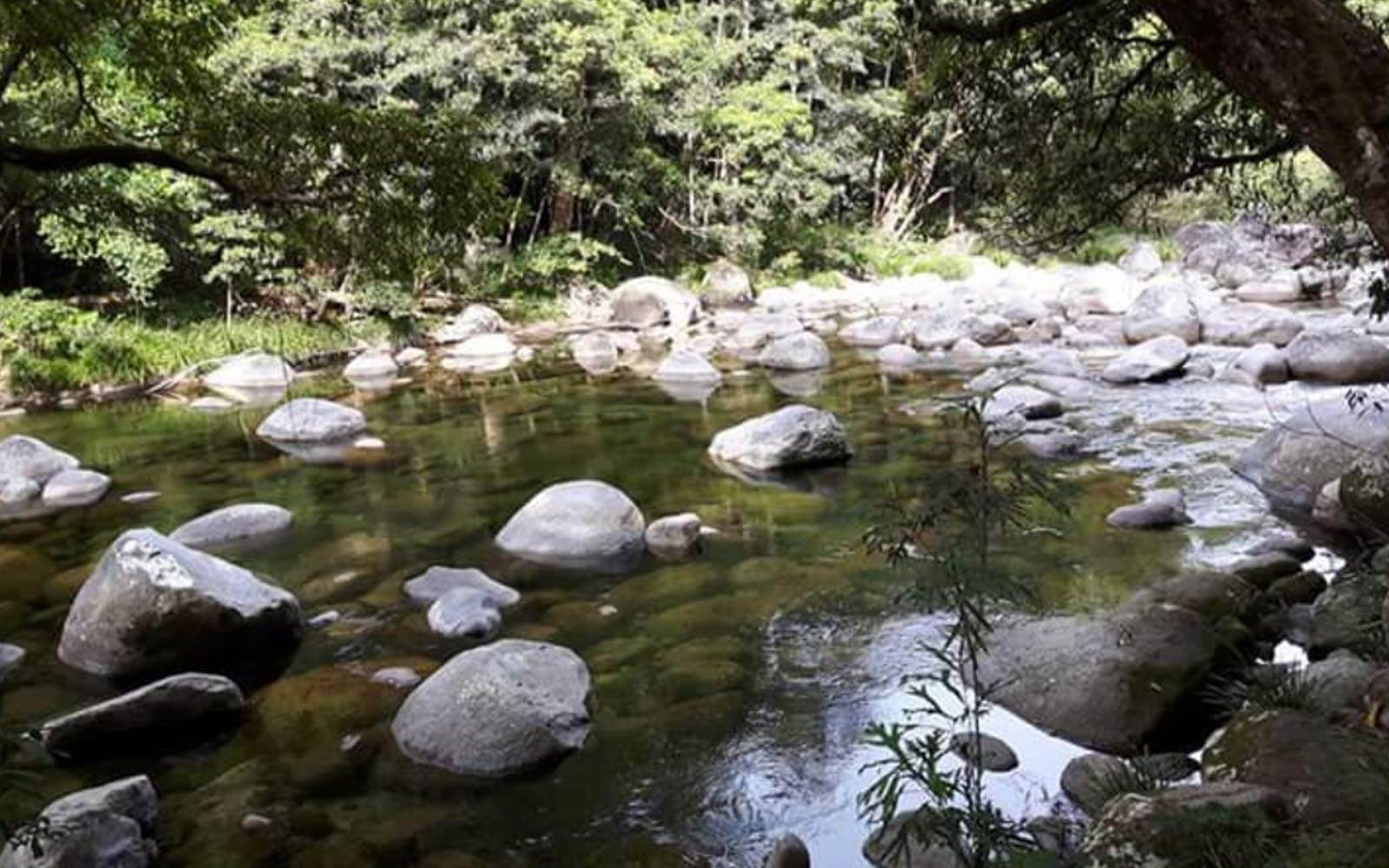 Mossman Gorge bei Cairns