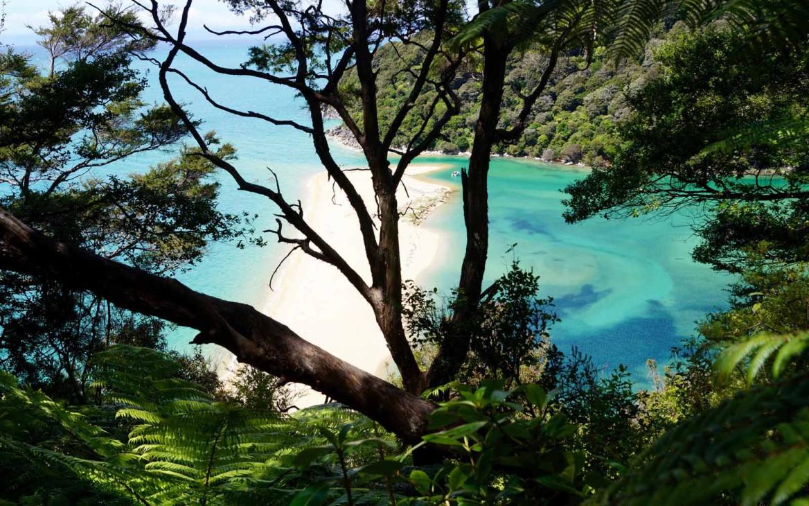Lena in Neuseeland #9: Mein Südinsel-Trip