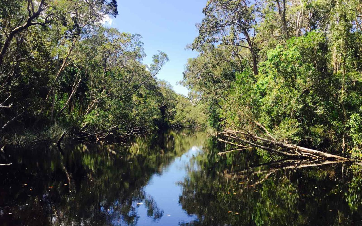 Lea in Australien #4: Mein erster Umzug – Noosa Heads