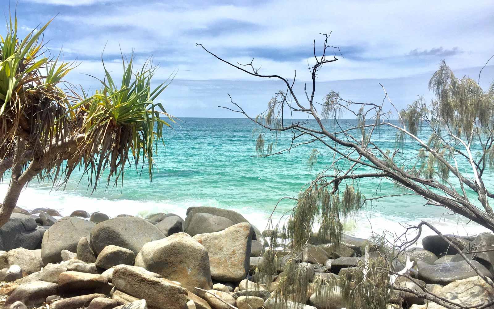 Meer und Palmen in Australien