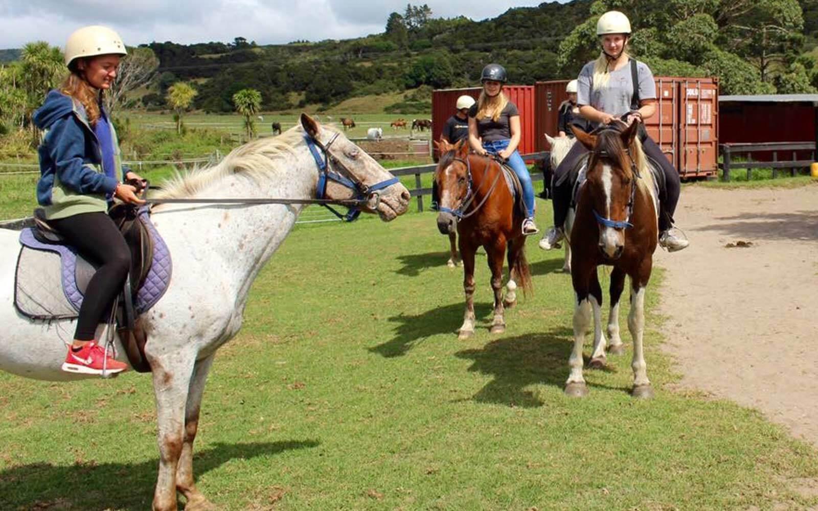 Lena und ihre Freundinnen auf Pferden
