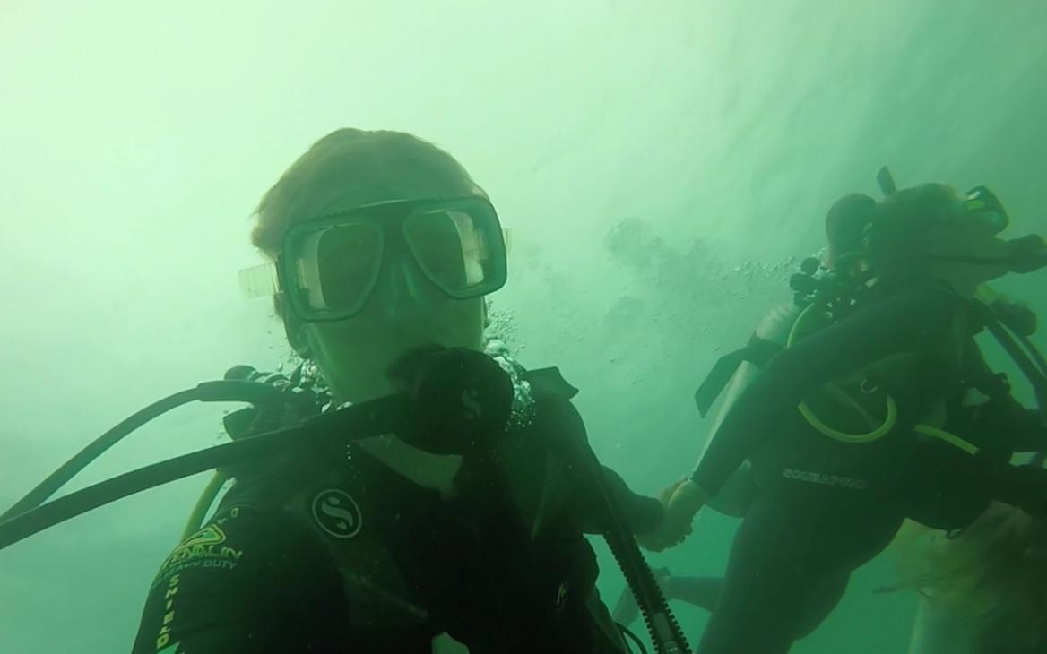 Max in Australien #6: Mein Ostküsten-Abenteuer