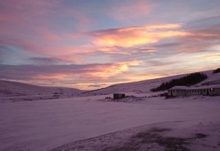 Stina in Island #7: Weihnachten im Stall