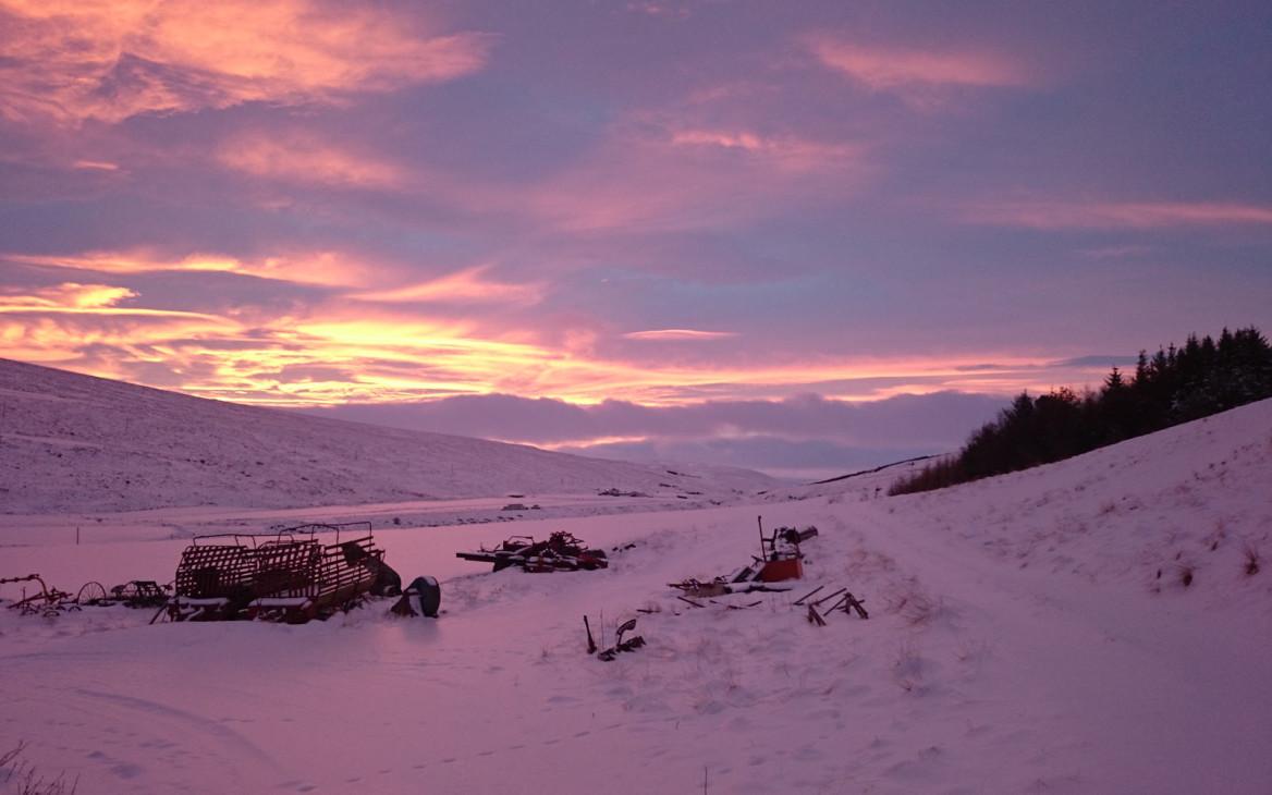 Stina in Island #8: Eine Runde Isländer-Kunde