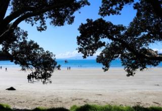 Aaron in Neuseeland #2: Glühwürmchen und Wunderland