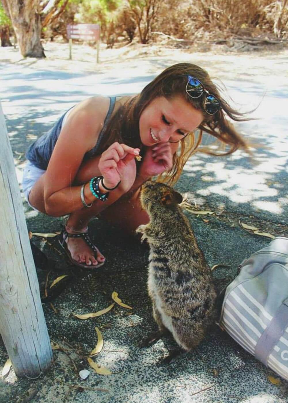 Jana füttert ein Quokka