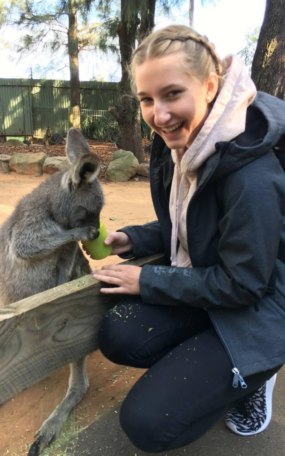 Känguru füttern