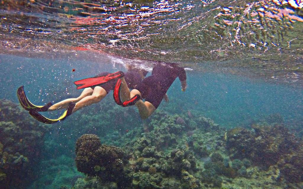 Schüleraustausch Australien: Unterwasserbild von zwei Schnorchelnden